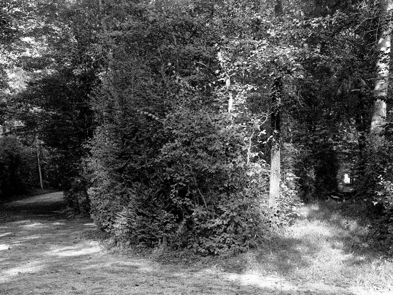 giardino villa terrachini